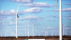 Políticas ambientales son para rehacer la economía y justificar el control sobre las personas: experto