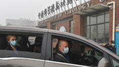 Conexión del delegado de EE.UU. ante la OMS con el Instituto de Virología de Wuhan plantea preguntas
