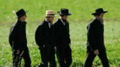 Comunidades amish y menonitas de Pensilvania pueden haber alcanzado la inmunidad colectiva
