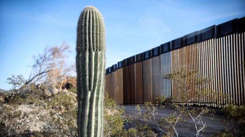 El muro fronterizo entre Estados Unidos y México se ve en el Parque Nacional Organ Pipe al sur de Ajo, Arizona, el 13 de febrero de 2020. (Sandy Huffaker/AFP a través de Getty Images)