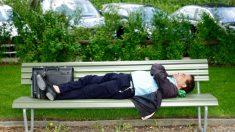 Tomar una siesta para alcanzar el éxito