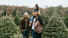 Cultivando jardineros: un caso para empezar un huerto familiar