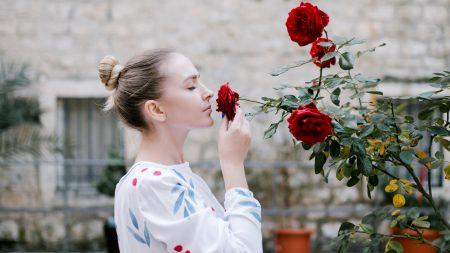 El olfato: olfateando este sentido olvidado
