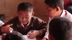Niño que caminaba 6 km junto a su abuelo para ir a la escuela se gradúa como el mejor y es recompensado