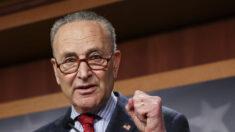 Schumer dice que el Senado votará sobre la verificación de antecedentes y el derecho al voto