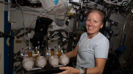 Primera misión conjunta de la NASA y SpaceX a EEI volverá a Tierra el sábado