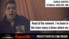 CNN instó a promover muertes por COVID-19 por rating, dice director de tecnología en grabación