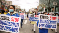 Sustracción forzada de órganos debería estar en agenda EE.UU.-China: Funcionario de libertad religiosa