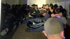 Patrulla Fronteriza detiene a 63 indocumentados que viajaban en un tráiler