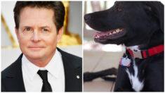 """Michael J. Fox despide a su fiel amigo Gus, su compañero de batalla en la enfermedad: """"él me rescató"""""""