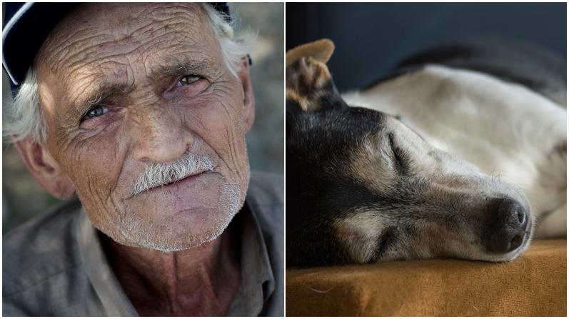 Abuelito que vive en extrema pobreza rescata a perro parapléjico para asistirlo en su humilde hogar