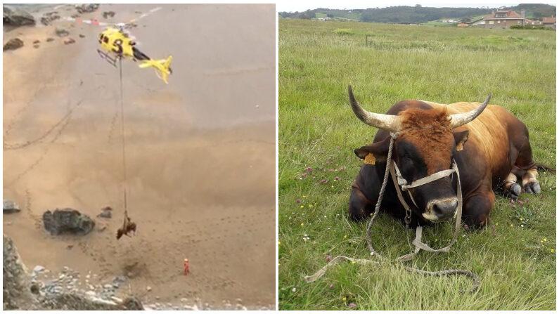 (Créditos: Bomberos de Astutias/SEPA Servicio de Emergencias del Principado de Asturias)