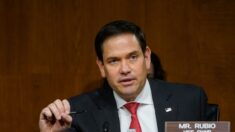 Senador Rubio insta a Delta a condenar genocidio de uigures por parte del régimen chino