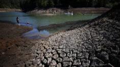 Gobernador de California declara la emergencia por sequía en 2 condados