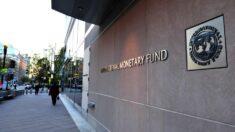Fondo Monetario Internacional señala una recuperación del desempleo