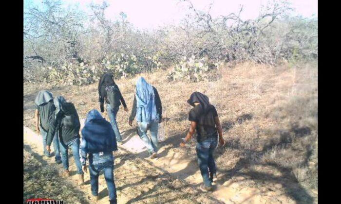 Una cámara de vigilancia capta a varios inmigrantes ilegales caminando por terrenos de ranchos privados en el Condado de Jim Hogg, Texas, el 25 de marzo de 2021. (Cortesía de Susan Kibbe)