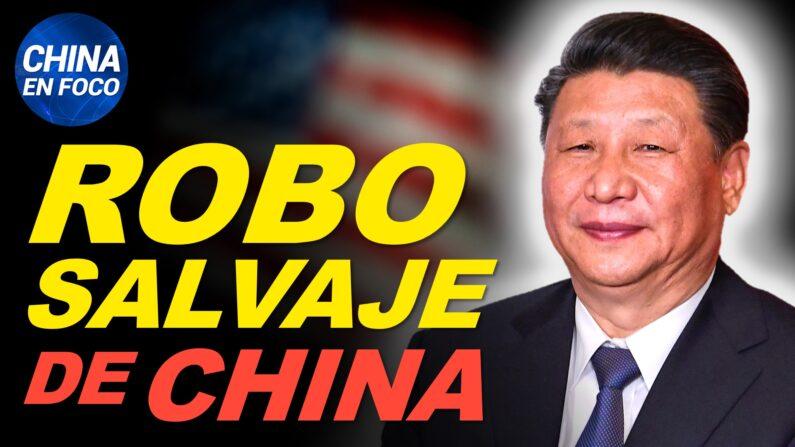 Robo salvaje y plagio descarado del régimen chino. Peligro para mujeres embarazadas en China. (China en Foco/NTD en Español)