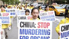 Senado de Texas aprueba resolución para frenar sustracción forzada de órganos en China