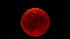 """Extraordinario eclipse lunar total de """"Luna de sangre"""" coincide con superluna el 26 de mayo"""