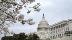 Más republicanos del Congreso votaron en contra del despilfarro en 2020, pero apoyaron las asignaciones