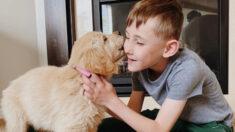 """Niño que sufrió la amputación de una pierna adopta a una amiga peluda de 3 patas: """"Es como yo"""""""