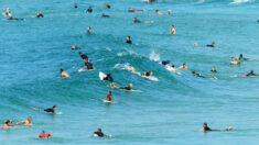 Un surfista muere tras el ataque de un tiburón en el este de Australia