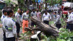Aumentan a 81 los muertos por el paso del ciclón Tauktae por la India