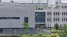 Cuestionan a los NIH sobre ONG de EEUU que ayudó a financiar el laboratorio de Wuhan: Rep. del GOP