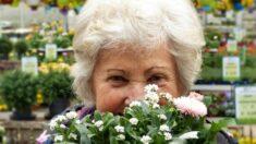 Abuelita de 93 años confecciona abrigos para niños con cáncer