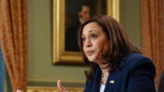 """Harris se reúne con líderes de Guatemala para abordar las """"causas principales de la inmigración"""""""