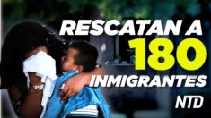NTD Noticias: Texas: Rescatan a 180 inmigrantes ilegales; DeSantis promulga importante ley