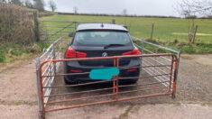 Agricultor responde de forma creativa ante conductor de un BMW que bloqueó la puerta de su granja