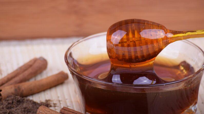 La miel contiene más de 181 sustancias beneficiosas para la salud y convierte la saludable vitalidad de las plantas en un alimento energético perfecto para los seres humanos. (ExplorerBob / Pixabay)