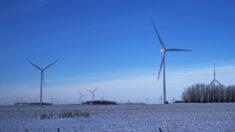 Administración Biden aprueba primer gran proyecto de energía eólica marina del país