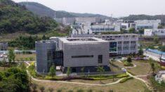 Nueva evidencia de investigadores enfermos del laboratorio de Wuhan: Investiguen el laboratorio ahora