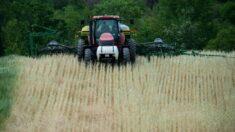 """Agricultores demandan a la administración Biden por plan de alivio por COVID """"racista"""""""