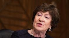 Senadora Collins no apoya impuesto del 28% a sociedades porque enviaría empleos al extranjero