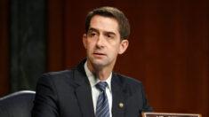 """El senador Cotton acusa a demócratas de """"chantaje"""" por las amenazas respecto a la Corte Suprema"""