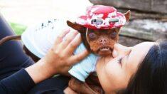 """Perrito deforme por rara enfermedad es adoptado por una compasiva mujer que vio su """"belleza interior"""""""