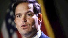 Senadores Rubio y Menéndez reintroducen proyecto para combatir tráfico de médicos cubanos