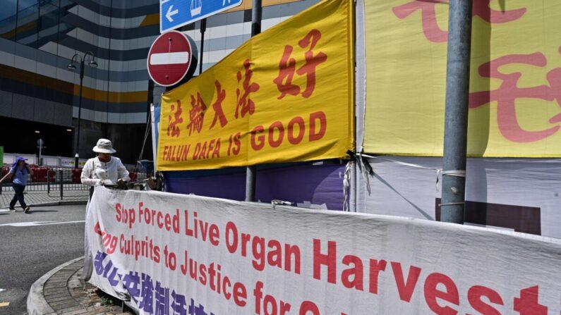 Una mujer ajusta pancartas en apoyo de la práctica espiritual Falun Gong, un grupo prohibido en China continental, en Tung Chung, una zona popular entre los turistas de China continental, en Hong Kong el 25 de abril de 2019. (Anthony Wallace/AFP vía Getty Images)