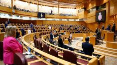 Senado de España vota en contra de moción para condenar violaciones de DD. HH. y represión en Cuba