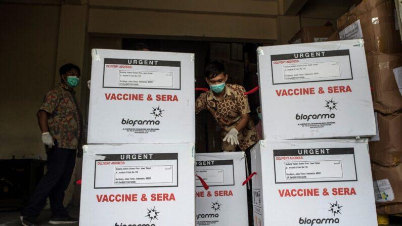 Un trabajador sanitario comprueba los contenedores de la vacuna COVID-19 producida por la empresa china Sinovac, a su llegada a Surabaya, una ciudad de Indonesia, el 13 de enero de 20210. Juni Kriswanto/AFP vía Getty Images)