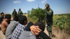 """La vicepresidenta hará un viaje """"políticamente"""" seguro a la frontera sur: Demócrata de Texas"""