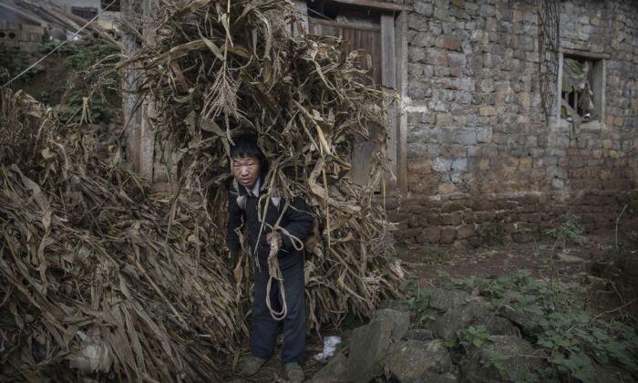 """Nuevo estudio desmiente """"milagro"""" de Xi Jinping: La pobreza extrema existe en China"""