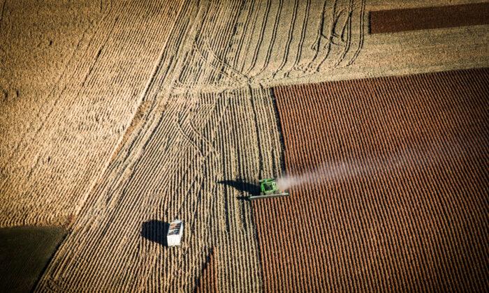 Juez detiene programa de ayuda a deuda de agricultores de color por posible inconstitucionalidad
