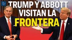Al Descubierto: Trump visitará la frontera sur | Encuentran 11 patógenos peligrosos en mascarillas