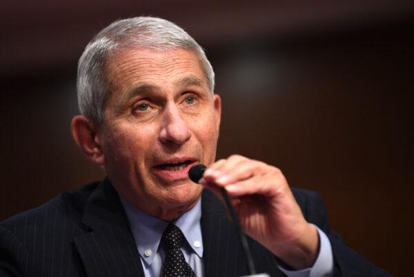El Dr. Anthony Fauci, director del Instituto Nacional de Alergias y Enfermedades Infecciosas, declara en una audiencia del Senado en Washington, el 30 de junio de 2020. (Kevin Dietsch/Pool/Getty Images)
