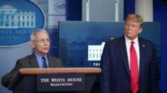 Trump: Fauci debe responder 'muchas preguntas'