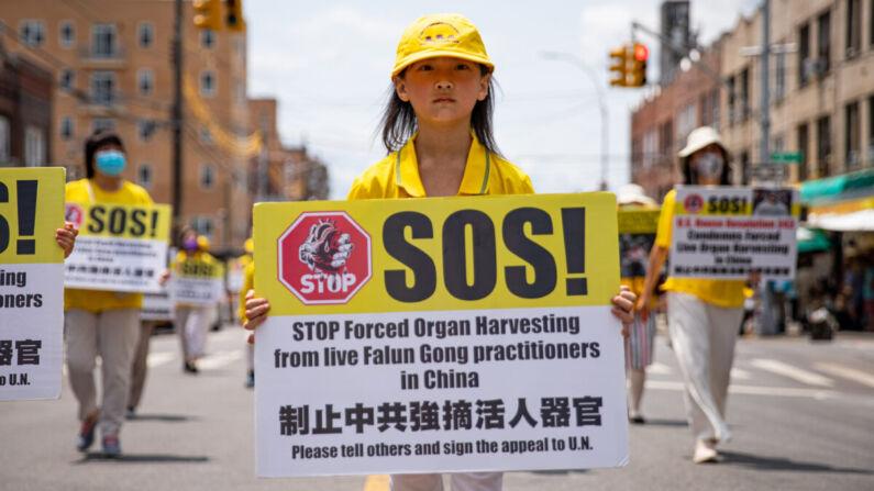 """""""Asesinato comercializado"""" de China en industria de trasplantes debe terminar: político británico"""